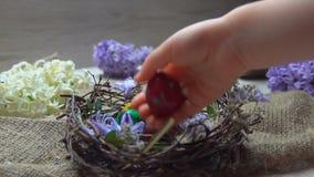 A mão do ` s da criança coloca o ovo colorido dentro no ninho da Páscoa video estoque