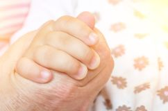 Mão do ` s da criança de um aperto de mão da criança de uma mão adulta do ` s do homem da mão Conceito do relacionamento da avó e Imagens de Stock Royalty Free