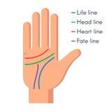 Mão do ser humano da quiromancia ilustração do vetor