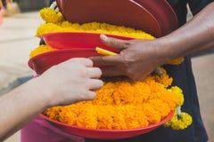 A mão do vendedor que escolhe uma bandeja de festão fresca do cravo-de-defunto para um comprador imagem de stock