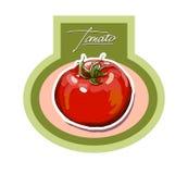 Mão do vetor que tira tomates suculentos Imagens de Stock