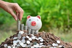 Mão dos povos que guardam a moeda e a gota no mealheiro Fotografia de Stock Royalty Free
