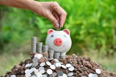 Mão dos povos que guardam a moeda e a gota no mealheiro Foto de Stock