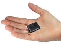 Mão e carteira Imagem de Stock