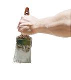Mão e escova Fotografia de Stock Royalty Free