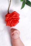 Mão e flor do bebê Fotos de Stock Royalty Free