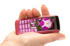 Mão e telefone imagem de stock royalty free