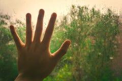 Mão em janelas molhadas com fundo verde da árvore Fotografia de Stock Royalty Free
