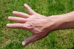A mão esquerda dos homens imagens de stock royalty free