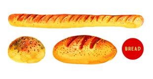 Mão estilizado a ilustração tirada da aquarela ajustou-se com pão ilustração do vetor