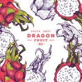 Mão exótica deliciosa frutos tirados do vetor ilustração royalty free