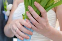 Mão fêmea Imagem de Stock