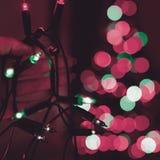 Mão fêmea que guarda a corda de luzes de Natal com a árvore defocused do xmas no fundo Luzes de Natal fotografia de stock royalty free