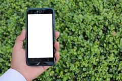 Mão fêmea que guarda o fundo do smartphone com o céu azul nebuloso exterior natural, foco seletivo fotografia de stock royalty free