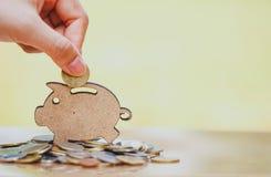 Mão fêmea que põe a moeda e a pilha de moedas no conceito das economias e do crescimento do dinheiro ou das economias da energia imagem de stock