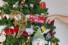 Mão fêmea que pendura ornamento sazonais em uma árvore de Natal com luzes foto de stock