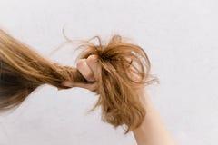 Mão fêmea que penteia com escova seu cabelo longo danificado seco Preparação diária para olhar agradável imagem de stock royalty free