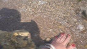 Mão fêmea que toca no mar de sal video estoque