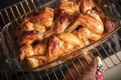 A mão fêmea retira as asas de galinha do forno imagens de stock