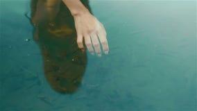 Mão frágil da mulher na água azul limpa com peixes (termas dos peixes para cuidados com a pele) vídeos de arquivo