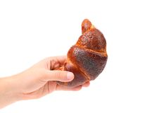 A mão guarda o croissant apetitoso. Fotos de Stock Royalty Free