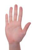Mão interna Foto de Stock