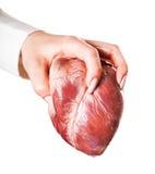 A mão joga o coração Fotografia de Stock