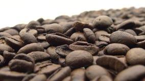 mão 4k com os feijões de café Roasted Ingrediente do frescor para para preparar o café vídeos de arquivo