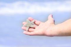 Mão masculina com uma estrela do mar Fotografia de Stock Royalty Free
