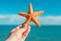 Mão masculina que guarda a estrela do mar alaranjada grande na frente do mar azul e do s fotografia de stock
