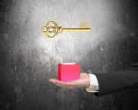 Mão masculina que guarda o bloco vermelho com sinal de dólar dourado Foto de Stock Royalty Free