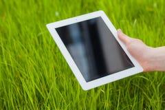 Mão masculina que guarda a tabuleta digital em um campo de grama Foto de Concep Imagens de Stock Royalty Free