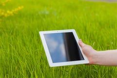 Mão masculina que guarda a tabuleta digital em um campo de grama Foto de Concep Fotografia de Stock