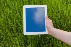 Mão masculina que guarda a tabuleta digital em um campo de grama Foto de Concep Imagem de Stock
