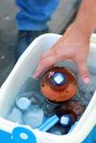 Mão masculina que tenta agarrar uma garrafa da cerveja fria congelada fora de uma cubeta portátil do refrigerador/gelo em um piqu Foto de Stock