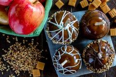 A mão mergulhou maçãs de caramelo com porcas e chocolate Fotos de Stock Royalty Free