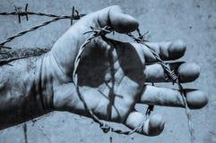 Mão na imagem tonificada azul do fio da farpa Imagens de Stock Royalty Free