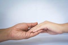 Mão no amor Foto de Stock