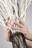 Mão no vime Imagens de Stock