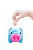 Mão nova das mulheres que põe a moeda do dinheiro no porco da economia, tema da finança fotos de stock