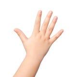 Mão ou palma isolada da criança foto de stock