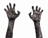 Mão preta da morte, o passeio absolutamente, tema do zombi, tema do Dia das Bruxas, mãos do zombi, fundo branco, mãos da mamã Fotos de Stock Royalty Free