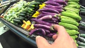 Mão que aponta a série sobre a cenoura da colheita video estoque