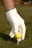 Mão que coloc a esfera de golfe em um T Fotos de Stock