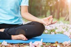 Mão que faz a ioga da meditação Fotografia de Stock Royalty Free