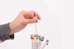Mão que guarda cabos da rede informática Fotografia de Stock