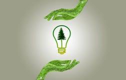 Mão que guarda o conceito da energia da ampola do eco Fotografia de Stock