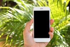 Mão que guarda o smartphone do modelo com fundo da árvore Imagens de Stock Royalty Free