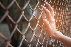 Mão que guarda sobre a cerca na rua Fotos de Stock