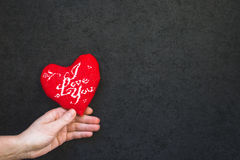 Mão que guarda um coração Foto de Stock